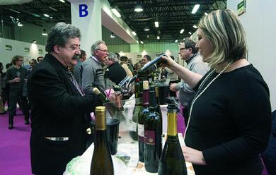 Immagine News - forla-da-venerda-fino-a-domenica-al-via-la-quarta-edizione-del-wine-festival