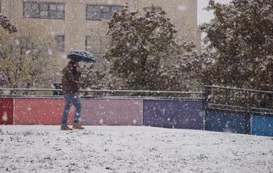 Immagine News - maltempo-neve-e-pioggia-ghiacciata-in-molte-citta-romagnole