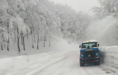 Immagine News - maltempo-la-regione-chiede-lo-stato-demergenza-nazionale-oltre-60-comuni-colpiti