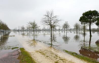 Immagine News - conselice-precipitazioni-abbondanti-canali-tracimano