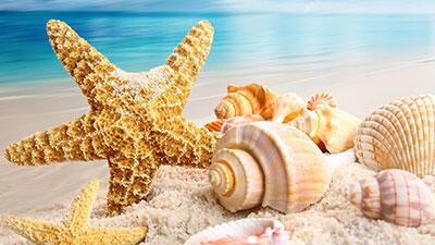 agenziainternazionale it trilocali-tutto-giugno-1600-compreso-servizio-spiaggia-per-lintero-periodo-o32 004