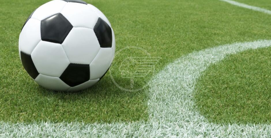 Calcio scommesse: squalifiche a 24 giocatori e multe a 6 società