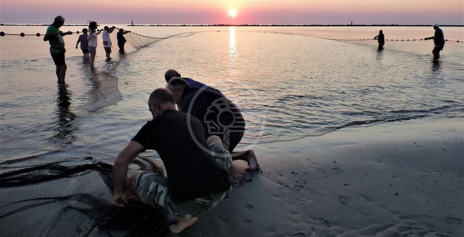 La pesca alla Tratta secondo Marina Carlini