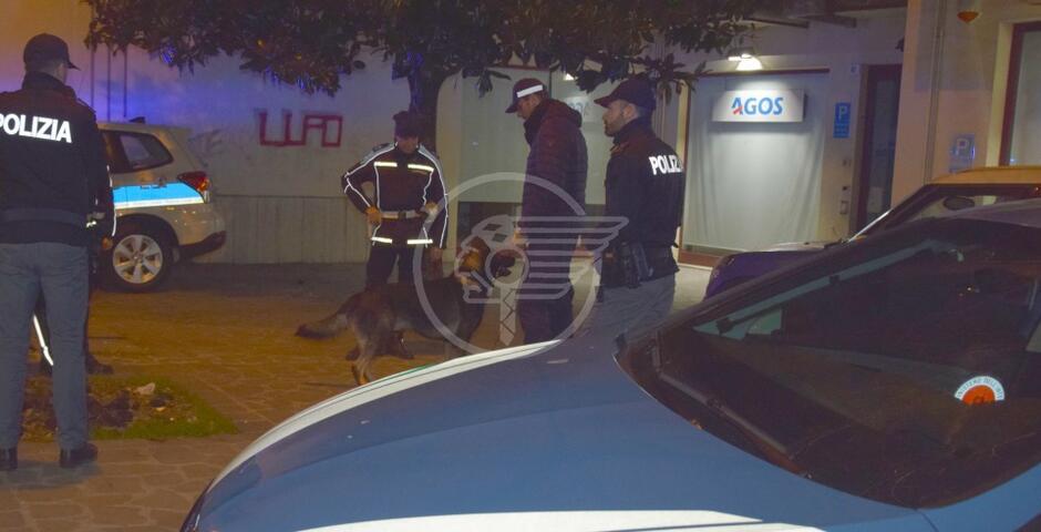 Due spacciatori arrestati, il cane Ziko scova droga