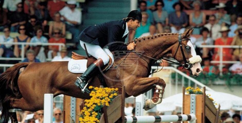 Morta la cavalla Weihaiwej, già campionessa del mondo