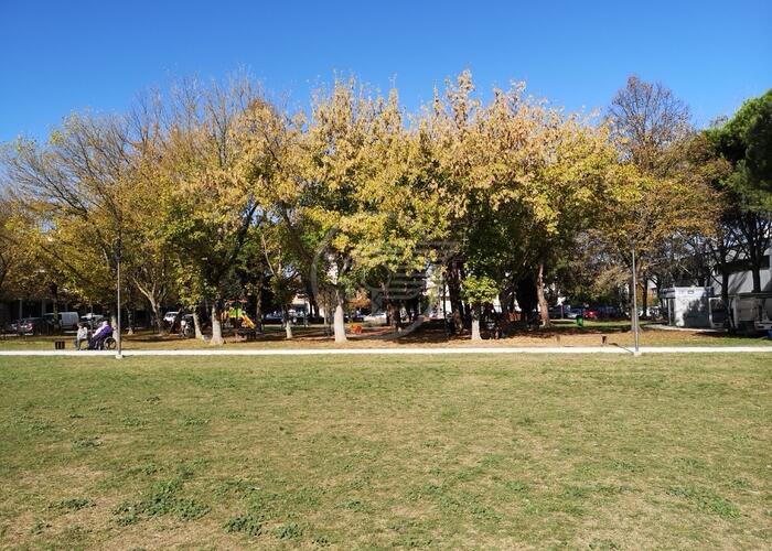 Campo sportivo, area cani e telecamere al Parco del Comune