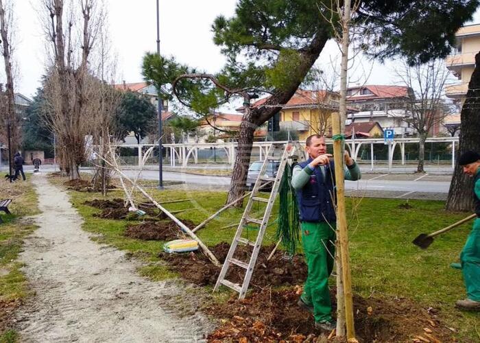 Oltre 200 nuove piante per il Parco del Gelso