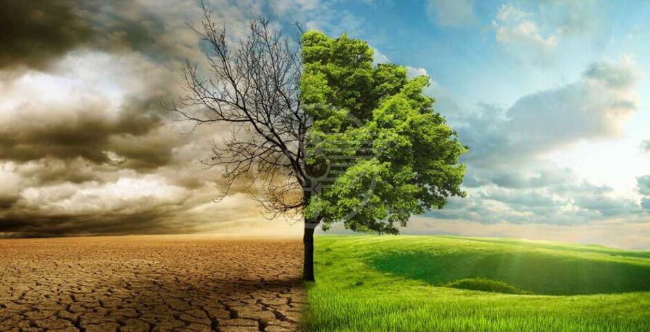 Cambiamenti climatici, incontro su diritti e doveri