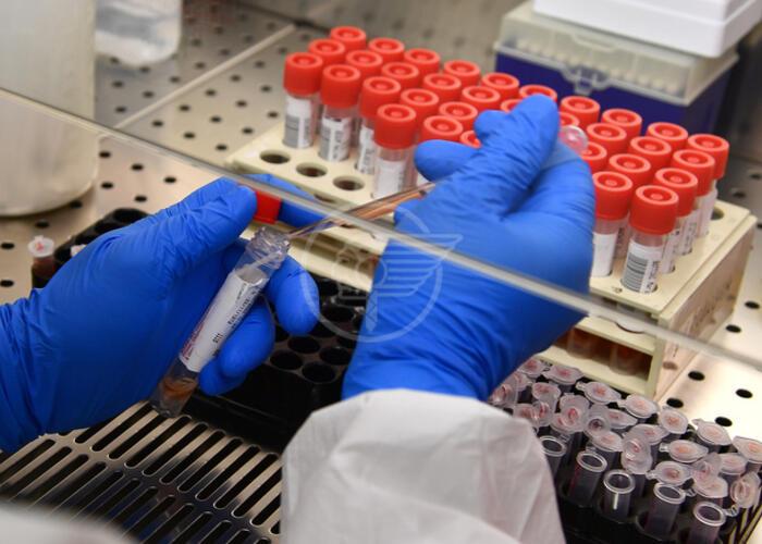 Nessun decesso e un solo caso di contagio nel Riminese
