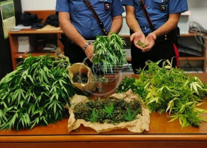Un chilo e 3 etti di marijuana: una denuncia a San Clemente