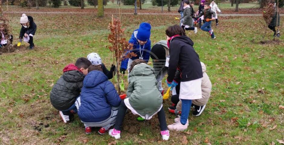 Oltre 200 nuove piante a dimora al Parco del Gelso
