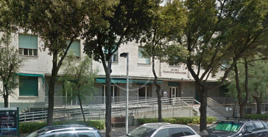 Fondazione Cetacea verso lo sgombero, pronta una nuova sede