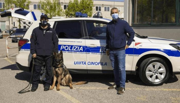 Un rinforzo in più contro gli spacciatori: in servizio il cane antidroga Dexter
