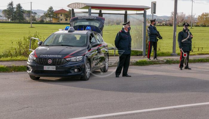 Picchia e ferisce un carabiniere, arrestato ma libero fino al processo