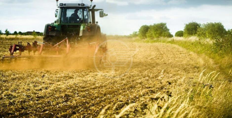 """Coraggiosa: """"A rischio l'agricoltura specializzata della zona nord"""""""