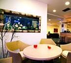 senigalliahotels de hotel-giulietta-s11 012