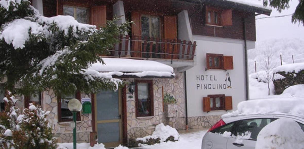 iperviaggi it scheda-hotel-pinguino-4840 010