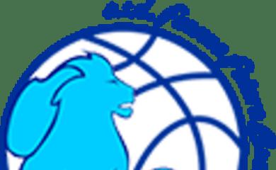 basket-domenica-16-lopen-day-di-futura-faenza