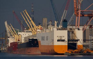 Immagine News - infortunio-al-porto-4-indagati-per-la-morte-del-59enne