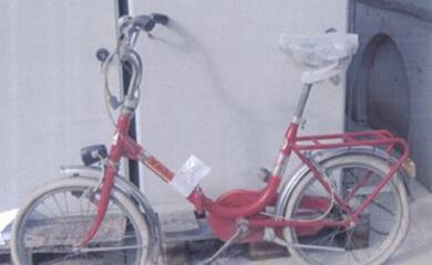bagnacavallo-vendute-tutte-le-bici-allasta