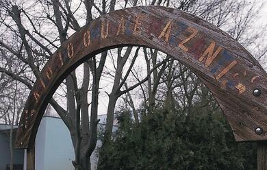 Immagine News - asilo-mazzanti-condannata-a-un-anno-la-quarta-maestra