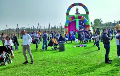 Immagine News - la-primavera-sboccia-a-traversara-in-un-doppio-weekend-di-festa-natura-e-dialetto