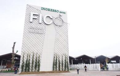 Immagine News - fico-eataly-world-15-milioni-di-visitatori-in-sei-mesi-estate-decisiva