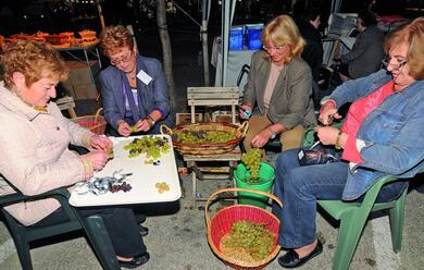 Immagine News - laautunno-au-a-tavola-tra-anguille-marroni-vino-e-polenta