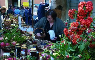 Immagine News - casola-il-13-14-e-20-21-ottobre-le-succulenti-fragranze-deifrutti-dimenticati