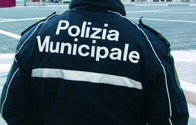 Immagine News - faenza-la-municipale-individua-ladri-di-biciclette