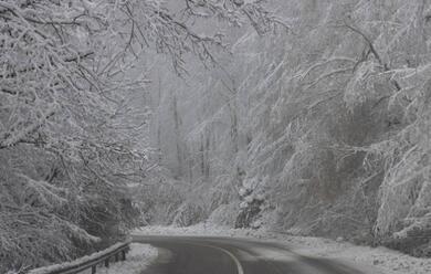 Immagine News - maltempo-e-nevicate-in-romagna-lallerta-della-protezione-civile