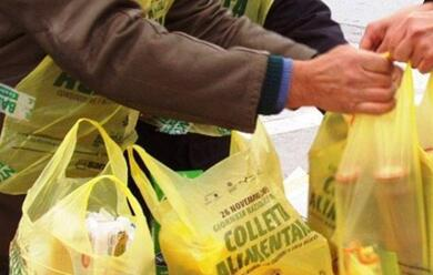 Immagine News - colletta-alimentare-in-emilia-romagna-oltre-167-milioni-di-pasti-donati-a-chi-ha-bisogno