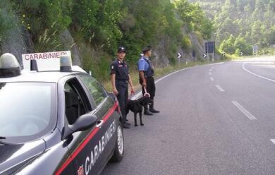 Immagine News - santarcangelo-cacciatore-trovato-morto-vegliato-dai-due-cani-per-giorni