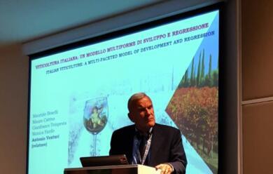 Immagine News - il-faentino-antonio-venturi-al-congresso-mondiale-della-vite-in-uruguay-laitalia-del-vino-caauserve-pera2-fare-sistema