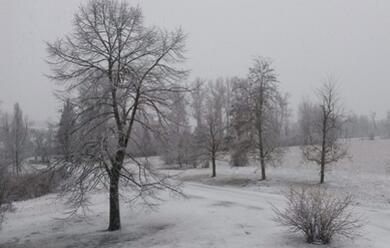 Immagine News - allerta-meteo-della-protezione-civile-domani-possibili-nevicate