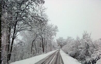 Immagine News - allerta-meteo-per-mercoleda-nevicate-in-buona-parte-della-romagna