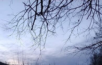 Immagine News - maltempo-allerta-rossa-in-bassa-romagna-per-la-piena-del-reno-fino-a-domenica-sera