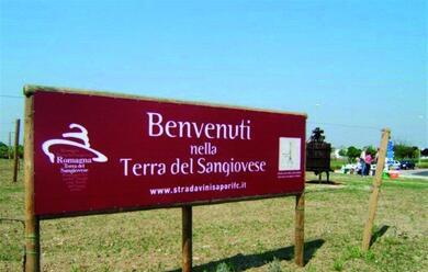 Immagine News - bologna-le-strade-dei-vinisincontrano-a-fico-per-un-nuovo-enoturismo-di-qualita