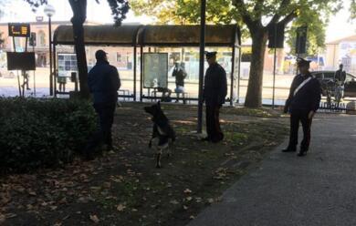 Immagine News - ravenna-videosorveglianza-ai-giardini-speyer-in-funzione-26-nuove-telecamere