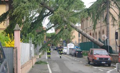 maltempo-a-ravenna-protezione-civile-al-lavoro-sui-tanti-lievi-danni-provocati-dal-forte-vento