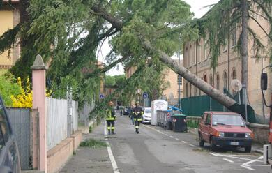 Immagine News - maltempo-a-ravenna-protezione-civile-al-lavoro-sui-tanti-lievi-danni-provocati-dal-forte-vento