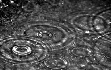 Immagine News - romagna-in-arrivo-vento-e-piogge-scatta-lallerta-arancione