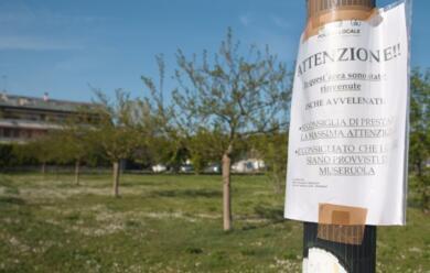 Immagine News - ravenna-bocconi-avvelenati-segnalati-al-parco-di-via-lanzoni