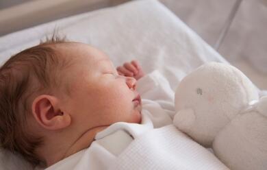 Immagine News - rimini-maltrattarono-figlio-neonato-genitori-a-processo