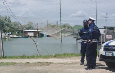 Immagine News - ravenna-blitz-della-polizia-alla-pialassa-baiona-contro-gli-abusi-edilizi-nei-capanni