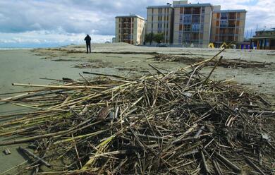 Immagine News - maltempo-quotdanni-economici-e-psicologiciquot-sulle-spiagge-di-ravenna-e-cervia