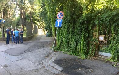 Immagine News - ravenna-intruso-scavalca-il-cancello-della-villa-di-cagnoni