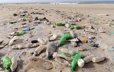 Immagine News - ravenna-via-plastica-e-sigarette-dalle-spiagge-accordo-fra-comune-hera-e-coop-spiagge