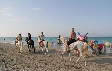 Immagine News - marina-romea-in-spiaggia-con-i-cavalli-multe-da-800-euro