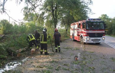 Immagine News - maltempo-in-romagna-alberi-caduti-e-danni-sulla-costa